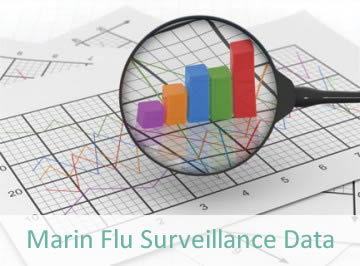 Flu Surveillance Data